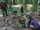 Łuski znalezione w parku przy czaplineckim LO