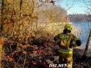 Pożar lasu. Strażacy gasili pożar w ciężkich warunkach. Zdjęcia