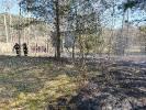 Strażacy gasili pożary w okolicach Bolegorzyna, Nowego Worowa i Czarnego Wielkiego