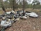 Leśnicy zszokowani znaleziskiem w drawskich lasach
