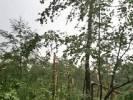 Okolice jeziora Dłusko(Ośrodek domków letniskowych) _3