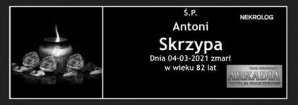 Ś.P. Antoni Skrzypa
