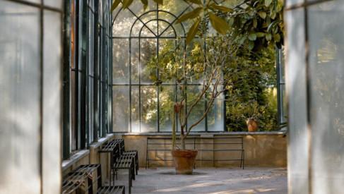 Jesienne aranżacje ogrodu - stwórz wymarzoną oranżerie