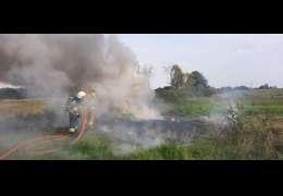 Strażacy ratowali płonący na polu ciągnik