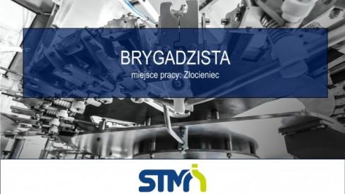 BRYGADZISTA w STM Sp. z o.o.