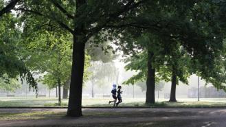 Jak często biegać – czy więcej znaczy lepiej?